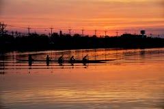 Team le travail des jeunes hommes dans un bateau de rangée silhouetté au coucher du soleil Photos libres de droits