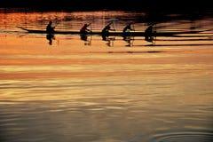 Team le travail des jeunes hommes dans un bateau de rangée silhouetté au coucher du soleil Photographie stock libre de droits