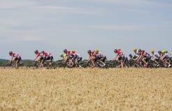 Team Lotto-Soudal - Tour de France 2017 Royaltyfria Foton
