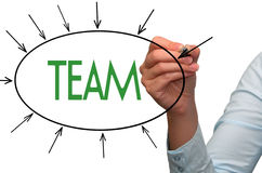 Team in a marketing presentation Stock Image