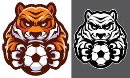 Tiger Football Soccer Mascot. Team mascot with determined tiger holding football or soccer ball vector illustration
