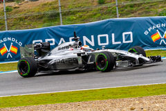 Team McLaren F1, Kevin Magnussen, 2014 lizenzfreie stockbilder