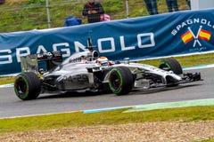 Team McLaren F1, Kevin Magnussen, 2014 lizenzfreie stockfotos