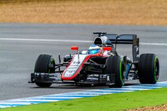 Team McLaren Honda F1, Fernando Alonso, 2015 lizenzfreies stockbild