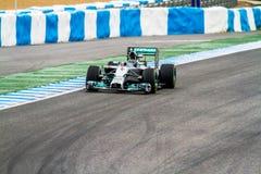 Team Mercedes F1, Nico Rosberg, 2014 Stock Afbeelding