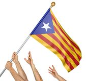 Team of peoples hands raising the Catalonia independence flag, 3D rendering isolated on white background. Group of peoples hands raising the independence flag of Royalty Free Stock Images