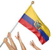 Team of peoples hands raising the Ecuador national flag stock photography