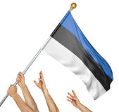 Team of peoples hands raising the Estonia national flag. 3D rendering isolated on white background Stock Photos