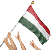Team of peoples hands raising the Hungary national flag. 3D rendering isolated on white background Royalty Free Stock Photo