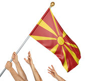 Team of peoples hands raising the Macedonia national flag. 3D rendering isolated on white background Stock Image