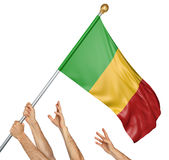 Team of peoples hands raising the Mali national flag. 3D rendering isolated on white background Royalty Free Stock Image