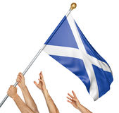 Team of peoples hands raising the Scotland national flag. 3D rendering isolated on white background stock image