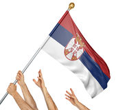 Team of peoples hands raising the Serbia national flag. 3D rendering isolated on white background Stock Photos