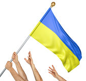 Team of peoples hands raising the Ukraine national flag. 3D rendering isolated on white background Royalty Free Stock Images