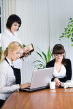 Team portrait of businesswomen in office Royalty Free Stock Photography