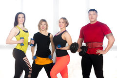 Team of positive sporty people posing with dumbbells in gym Stock Photos
