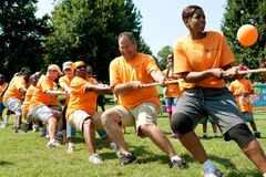 Team Pulls Rope In Adult Tug-Of-War Competition Royalty Free Stock Photos