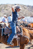 Team Roping Competition Imagem de Stock