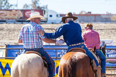 Team Roping Competition Royalty Free Stock Images