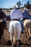 Team Roping Competition Stock Photography