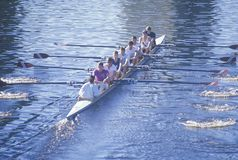 Team of Rowers Royalty Free Stock Photography