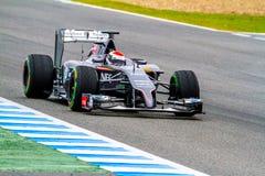 Team Sauber F1, Adrian Sutil, 2014 Lizenzfreie Stockbilder