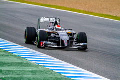 Team Sauber F1, Adrian Sutil, 2014 Lizenzfreie Stockfotografie