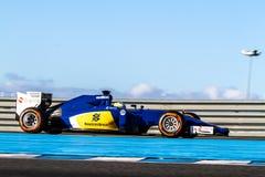 Team Sauber-MotorSport-F1, Marcus Ericsson, 2015 lizenzfreie stockfotos