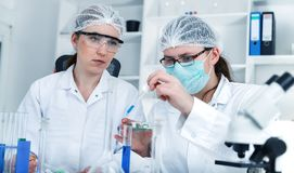 Team of scientists in a laboratory working on stock images