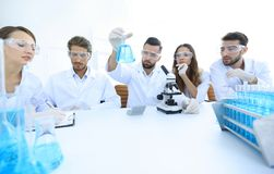 Team of scientists working together at the laboratory Stock Photos