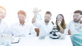 Team of scientists working together at the laboratory Royalty Free Stock Images