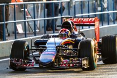 Team Scuderia Toro Rosso F1, Max Verstappen, 2015 stockbild