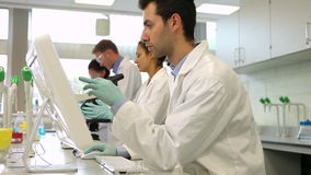 Team of serious science students working together in the lab stock footage