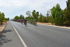 Team Sky At front Of Peleton La Vuelta España. Team Sky with the red jersey rider Chris froome and Cannondale Drapac leads the field in La Vuelta España Royalty Free Stock Photo