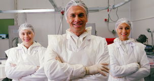Team of smiling butcher standing with arms crossed stock footage