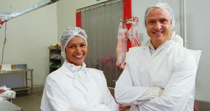 Team of smiling butcher standing with arms crossed stock video footage