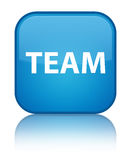 Team special cyan blue square button Stock Photos