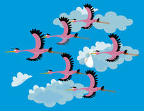 Team Stork Images libres de droits