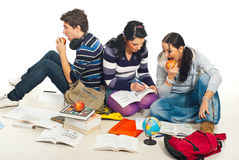 Team of students make homework Royalty Free Stock Photo