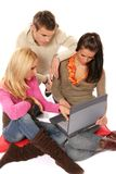 Team studying. Young students studying together using laptop, on white background Royalty Free Stock Photography