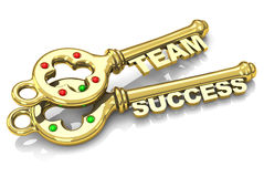 Team success. 3d generated picture of a team key and a success key stock illustration