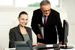 Team of two business executives working in office Royalty Free Stock Photos