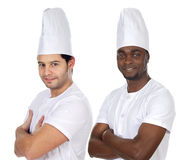 Team of two chefs Stock Image