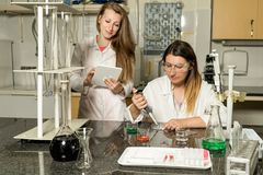 Team of two female laboratory technicians working in chemical or pharmaceutical laboratory. Team of two, Caucasian white, female laboratory technicians in white royalty free stock image