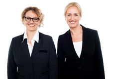 Team of two smiling businesswomen posing Royalty Free Stock Photo