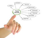 Team values and norms Royalty Free Stock Photography
