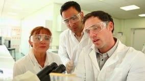 Team van geconcentreerde wetenschappers aan het werk in het laboratorium stock videobeelden