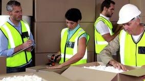 Team van pakhuisarbeiders die samenwerken stock videobeelden