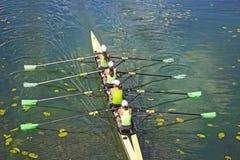 Team van roeiende vier-Roeispaan vrouwen stock afbeelding