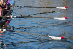 Team van roeiers die die voor regatta met roeispanen opleiden van water worden opgetild royalty-vrije stock afbeelding